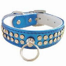 pet collar and leads